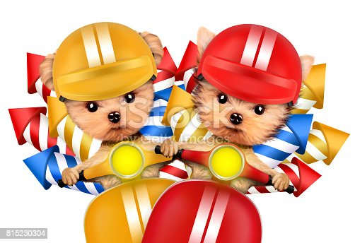 istock Couple of dogs carry firework rockets 815230304