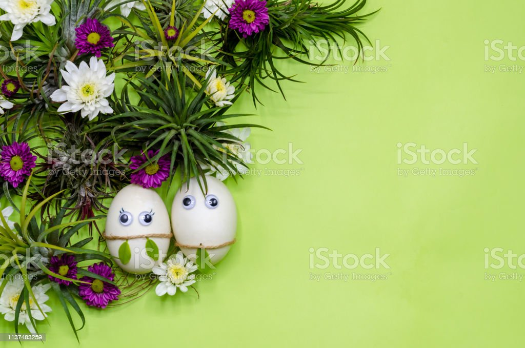 A couple of Easter egg hiding in green Tillandsia Airplant tress and chrysanthemum flowers on green color background.