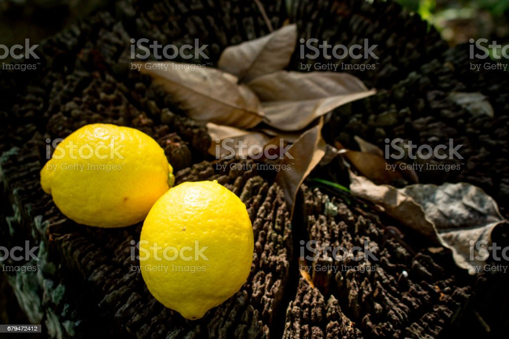 A Couple of Fresh Fruits on Wooden Background. Apple & Lemon royalty-free stock photo