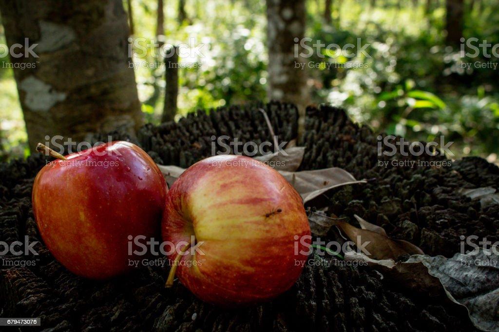 一對夫婦的木制背景上的新鮮水果。蘋果與檸檬 免版稅 stock photo