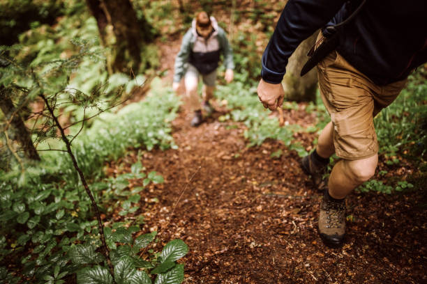 couple of hikers on their adventure in forest - men shoes stock pictures, royalty-free photos & images
