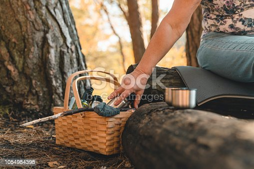 istock A couple of senior women on a picnic 1054984398