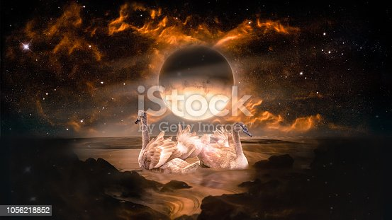 Couple of swans dancing in the landscape in fantasy alien planet sea with flaming moon and galaxy background.