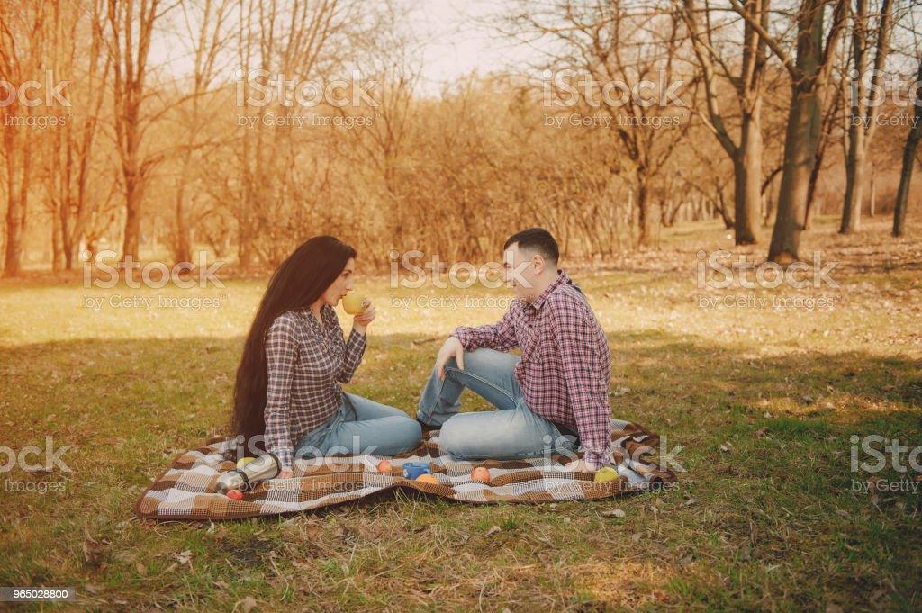couple on a picnic royalty-free stock photo