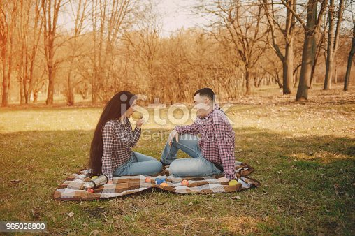 Couple On A Picnic Stock Photo & More Pictures of Adult
