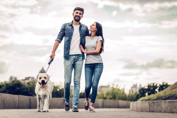 couple on a walk with dog - walking zdjęcia i obrazy z banku zdjęć