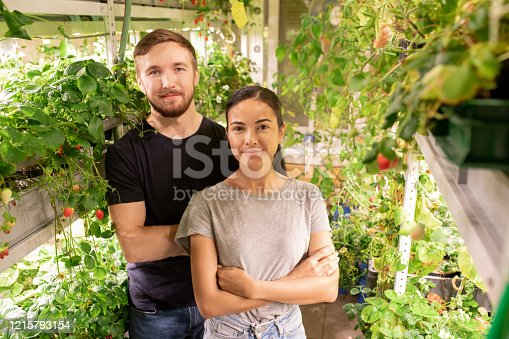 Portrait of smiling young couple in casual outfits standing with crossed arms in own small greenhouse with berry plants