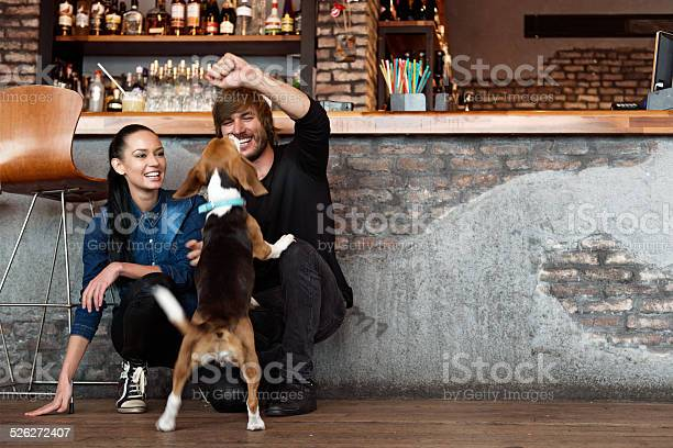Couple playing with a dog picture id526272407?b=1&k=6&m=526272407&s=612x612&h=xjomcmvw rrndkewfecgcrrfg1fh azk9txljbr4dza=