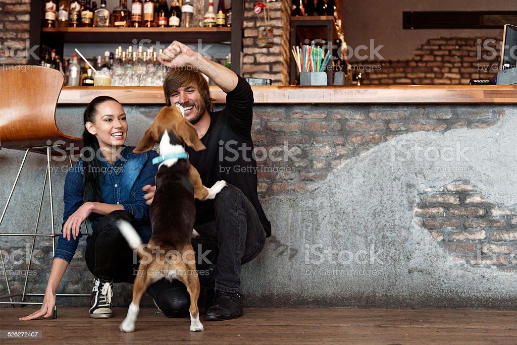 Paar Spielen mit Hund – Foto