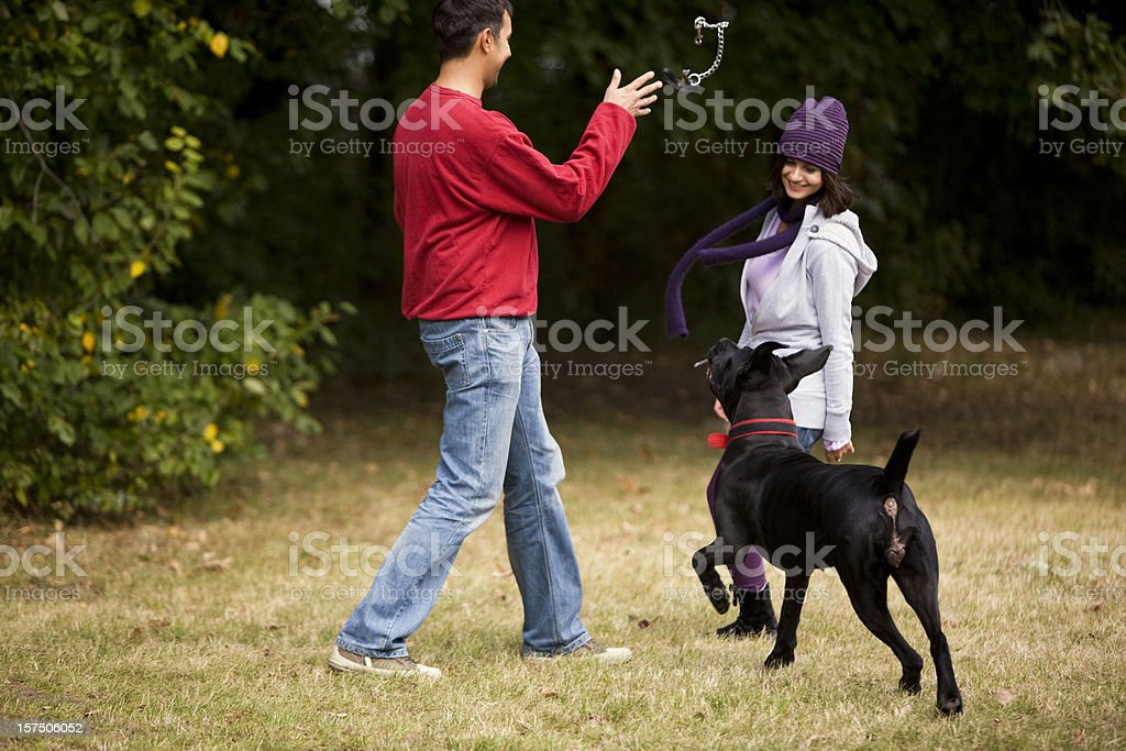 Couple playing with dog royalty-free stock photo