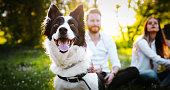 istock Couple playing with dogs 910871148