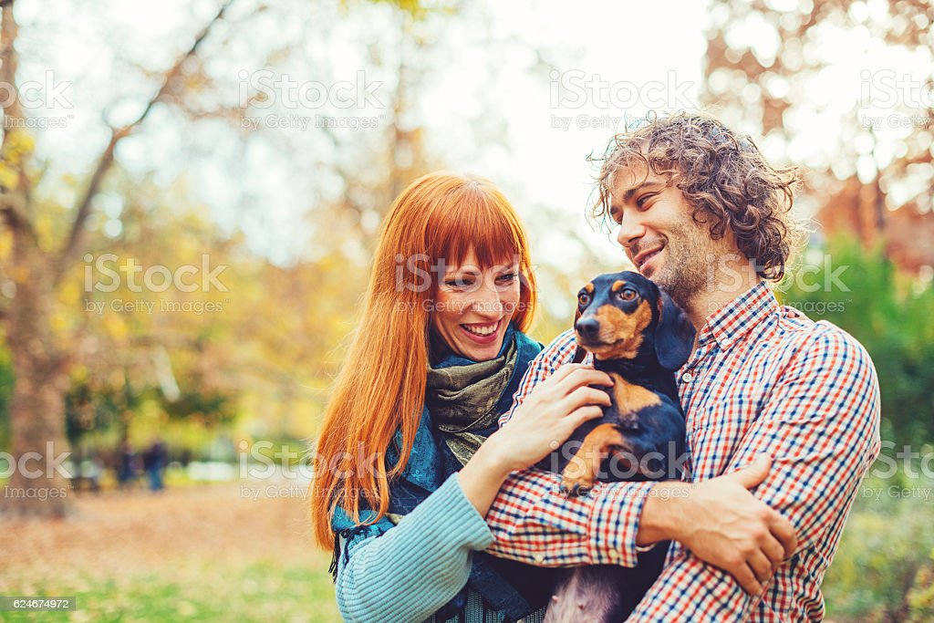 Couple playing with their dachshund dog stock photo
