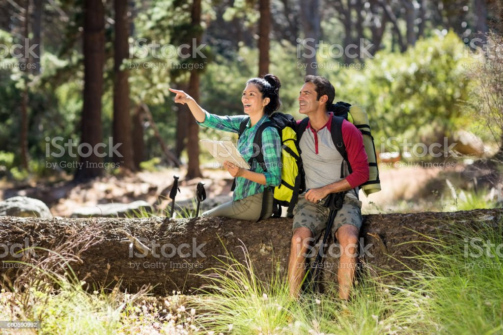 Couple pointing and sitting on a tree royalty-free stock photo