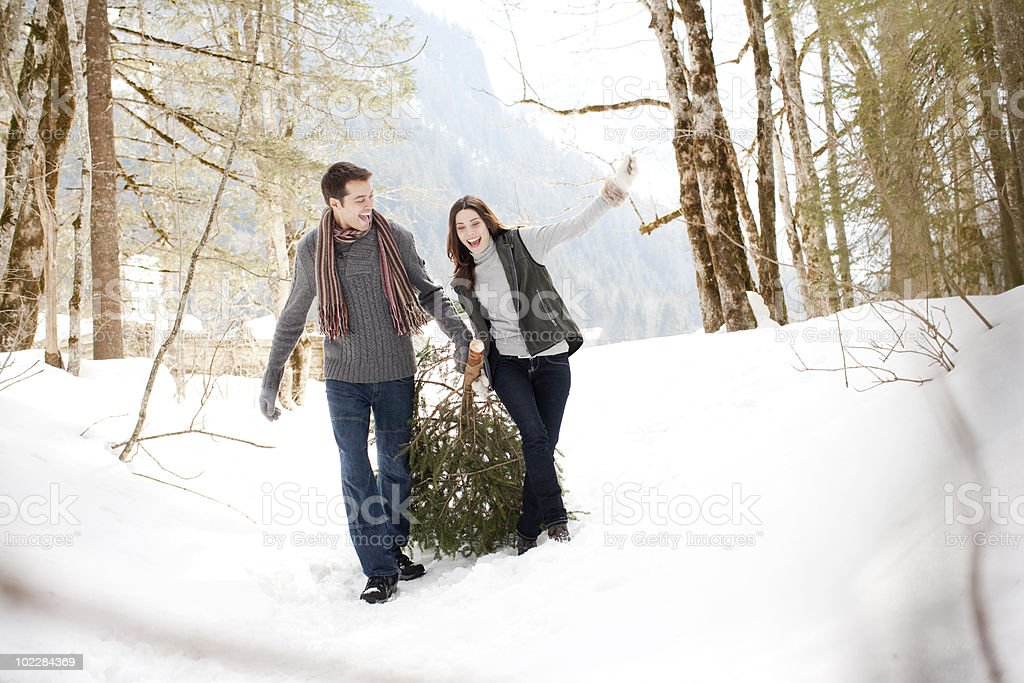 Couple pulling Christmas tree in woods stock photo