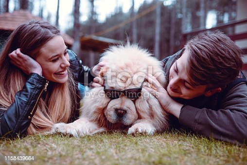 Couple Putting Glasses On A Cute Puppy