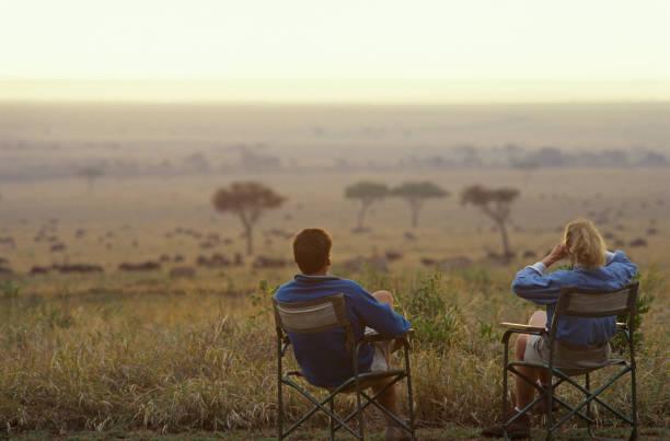par koppla av i fåtöljer på savannen - safari bildbanksfoton och bilder