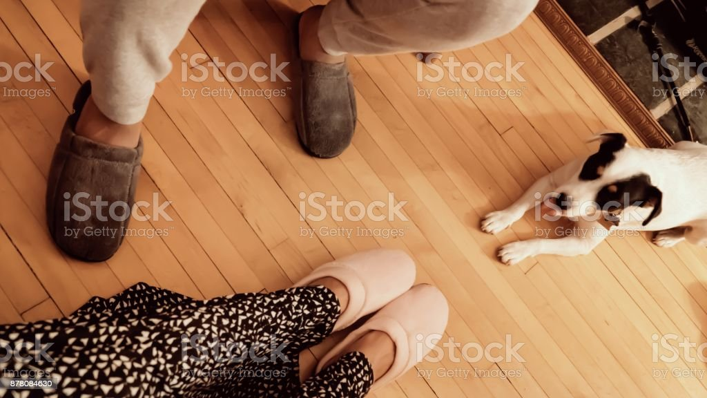 Couple relaxing at home with dog stock photo