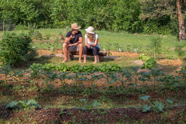 Couple relaxing in a Home Grown Vegetable Garden stock photo