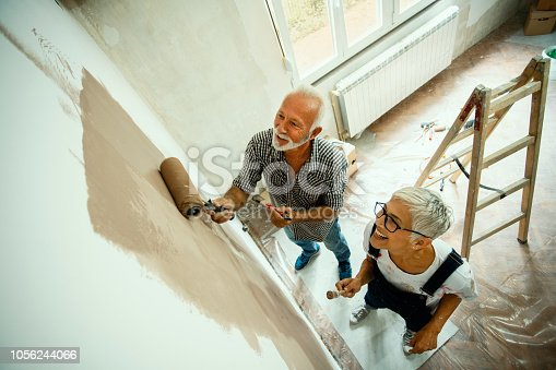 1063725014 istock photo Couple remodeling their home 1056244066