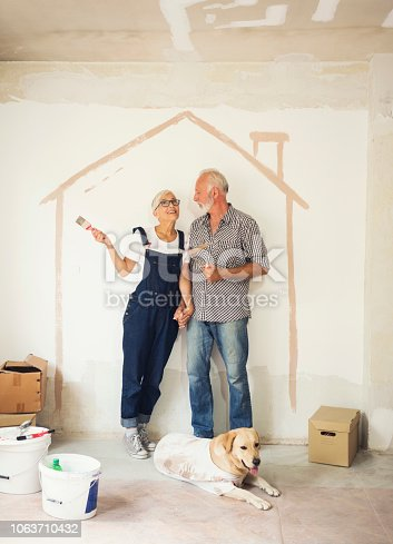 1063725014 istock photo Couple remodeling their home 1063710432