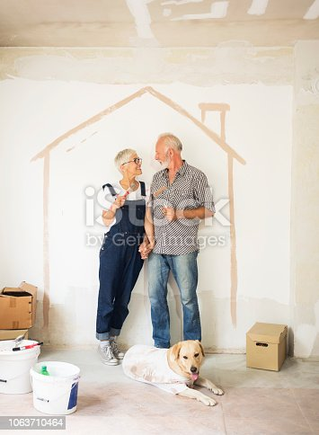 1063725014 istock photo Couple remodeling their home 1063710464