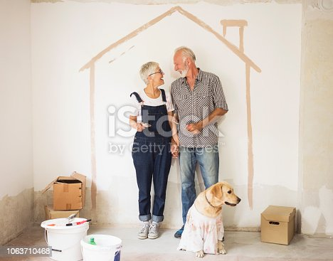 1063725014 istock photo Couple remodeling their home 1063710468
