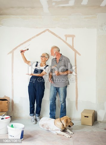 1063725014 istock photo Couple remodeling their home 1063710510