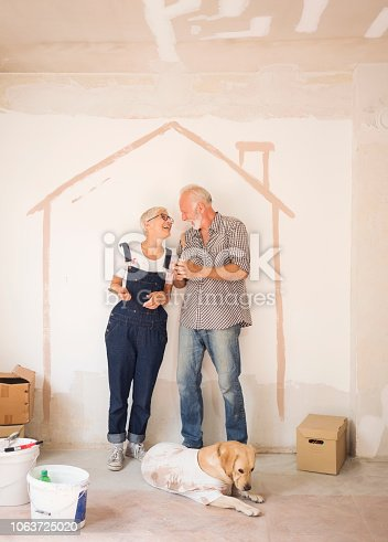 1063725014 istock photo Couple remodeling their home 1063725020