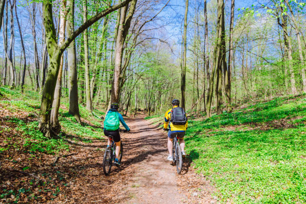 couple riding bicycle in forest in warm day stock photo