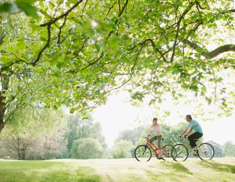 istock Couple riding bicycles underneath tree 108359509