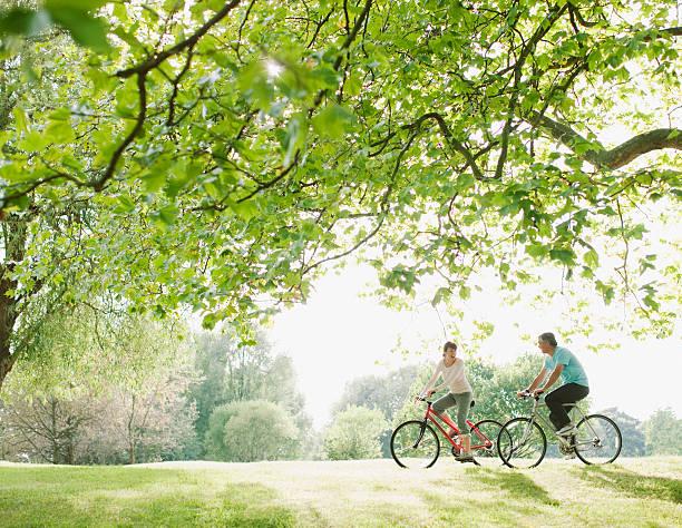 coppia biciclette equitazione sotto albero - ciclismo foto e immagini stock