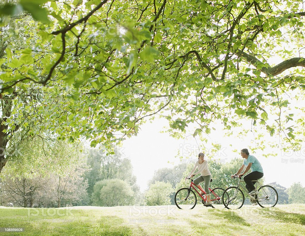 Couple riding bicycles underneath tree stock photo