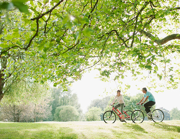couple riding bicycles underneath tree - openbaar park stockfoto's en -beelden