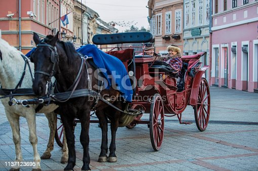 Happy senior couple is sitting in a horse-drawn carriage during a sightseeing tour in the city.