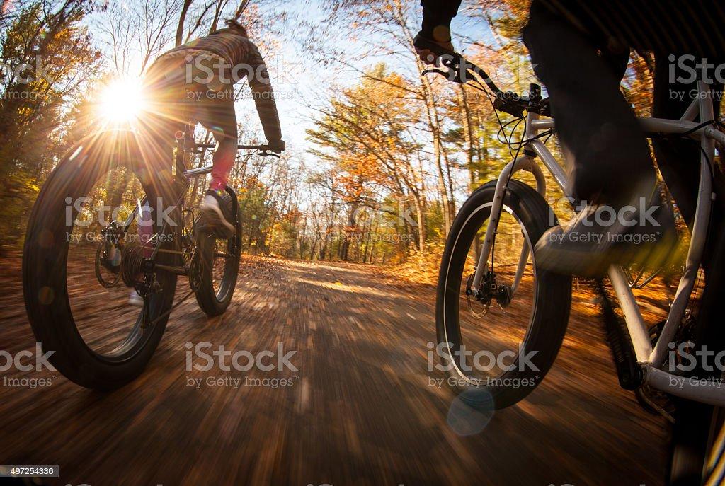 Couple riding their fatbikes through the forest. stock photo