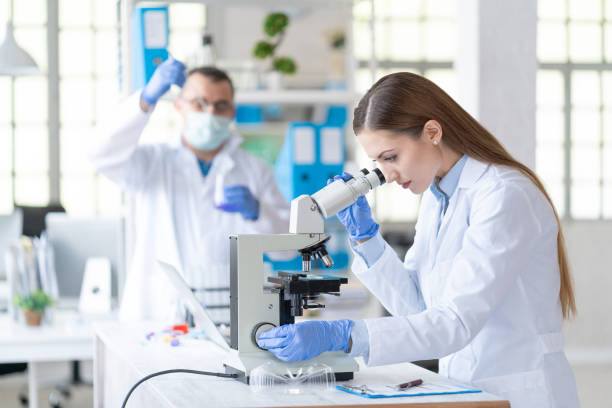 Couple scientists in laboratory stock photo