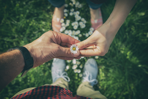 istock Couple sharing a flower in the park. 534137756
