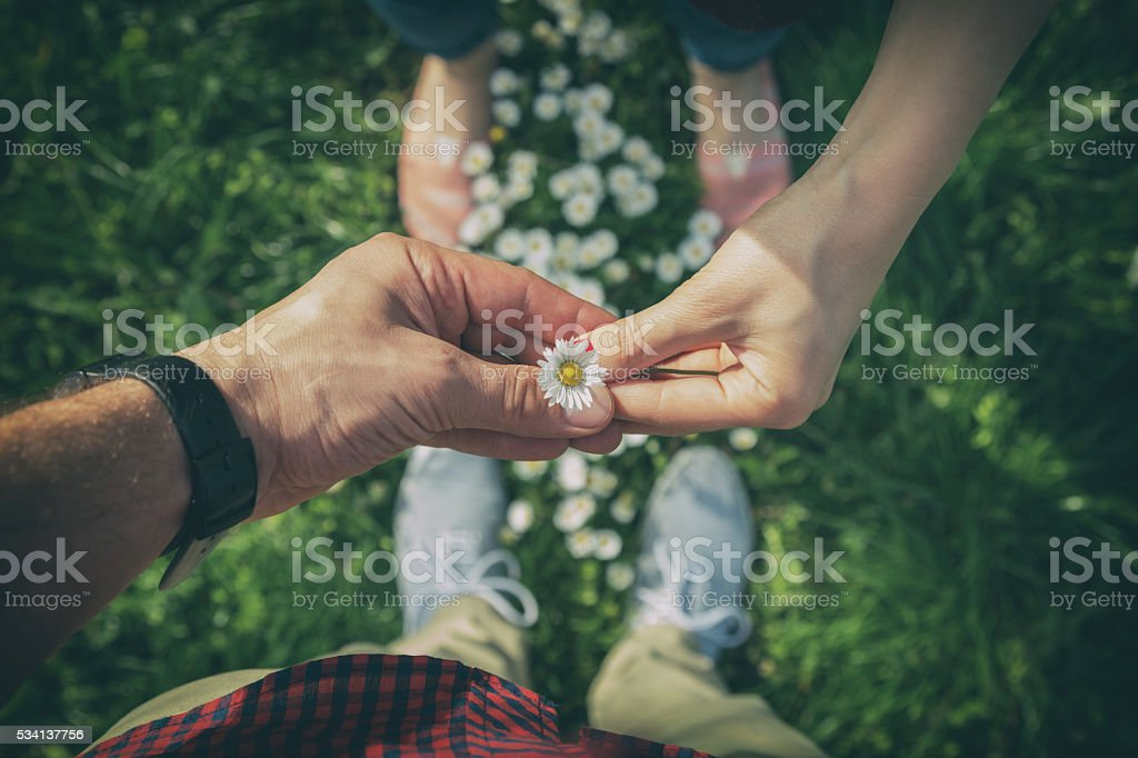 Couple sharing a flower in the park. stock photo