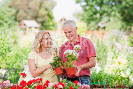 istock Couple shopping for flowers in nursery 107429253