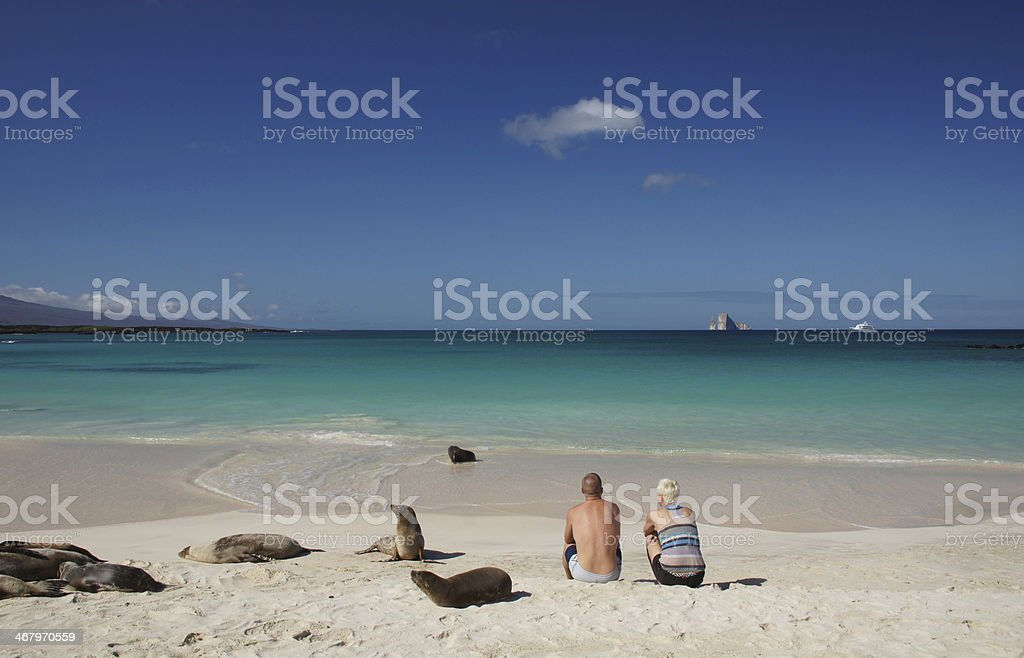 Couple Sitting with Sea Lions in the Galapagos stock photo