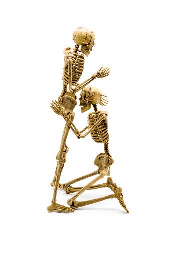 Couple Skeleton Model Lovers Having Oral Sex Stock Photo -6934