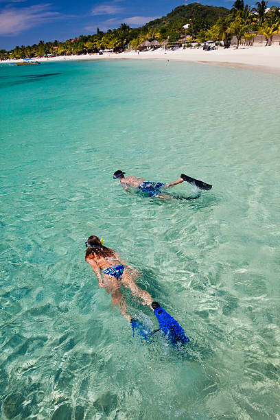 Couple snorkeling from tropical beach  roatan stock pictures, royalty-free photos & images