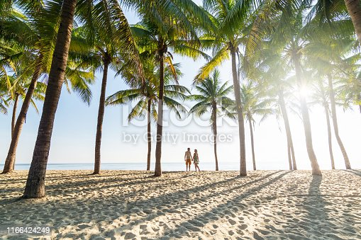 Couple standing on sandy beach among palm trees on sunny morning at seaside