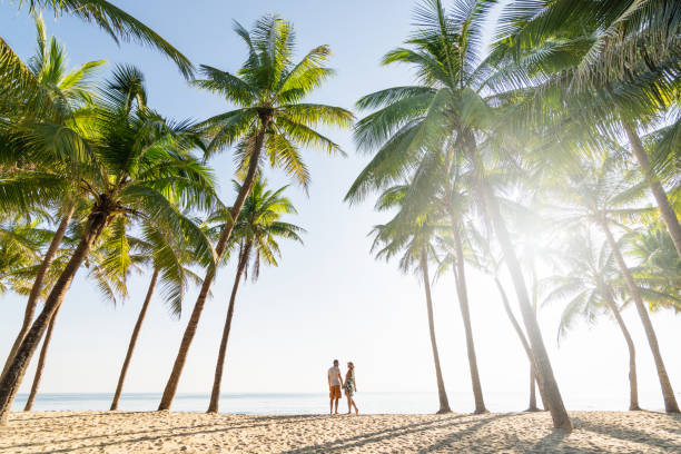 Couple standing on sandy beach among palm trees on sunny morning Couple standing on sandy beach among palm trees on sunny morning at seaside romance stock pictures, royalty-free photos & images