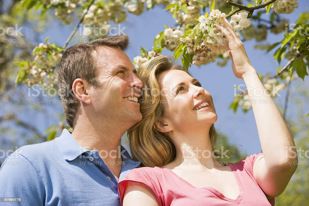 Couple standing outdoors holding blossom royalty-free stock photo
