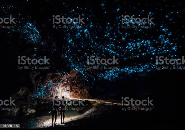 Glowworm Cathedral at the end of Waipu Cave in New Zealand
