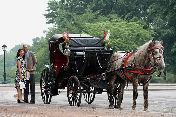 paar stand neben dem horse drawn carriage - pferdekutsche stock-fotos und bilder