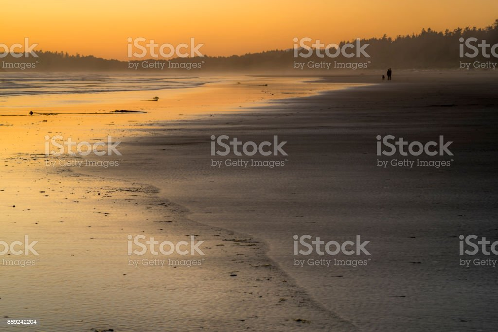 Couple strolling with a dog along the shores of Pacific Rim during sunset stock photo
