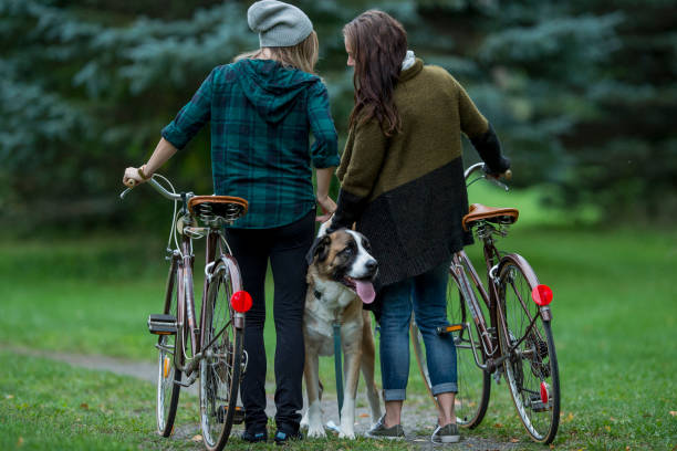 Couple taking their dog on a walk picture id641343886?b=1&k=6&m=641343886&s=612x612&w=0&h=fgpgwkpv3c1cbar9iaa7tvblyycaim5dfyz1infengo=