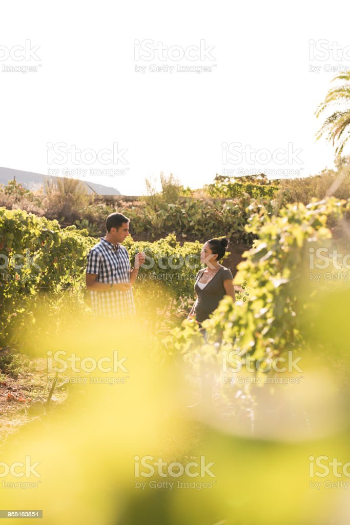 A couple talking in the vineyards stock photo